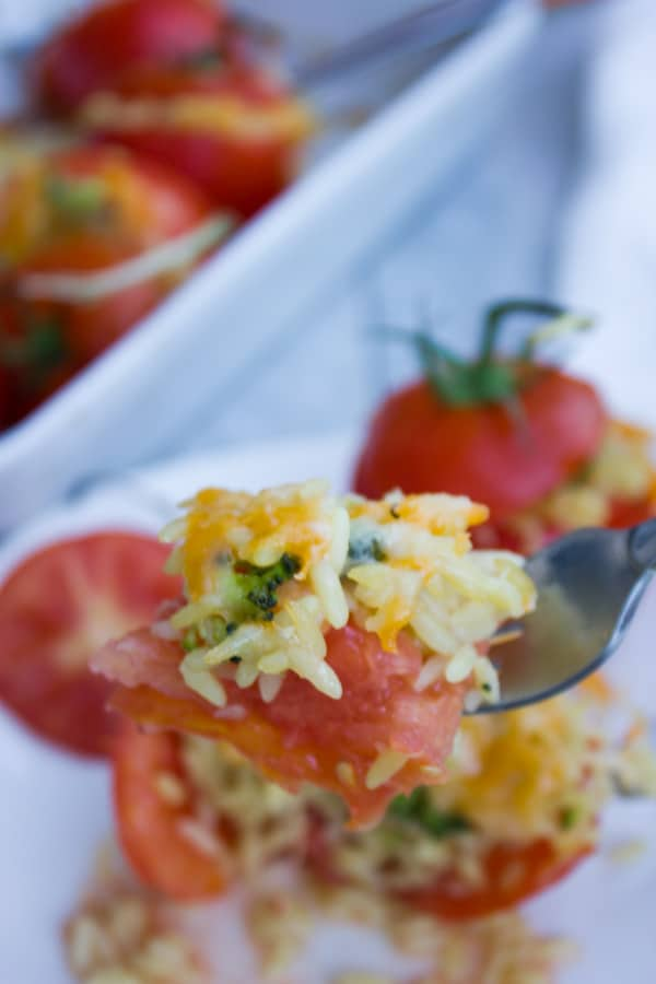 a fork full of Broccoli Rice Casserole Stuffed Tomatoes with cheddar cheese on top