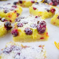 Orange Lemon Squares with Cranberries. Perfectly balanced squares of citrus, tang and sweet!