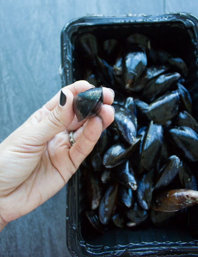 A hand holding a fresh water mussels ready to get it cleaned