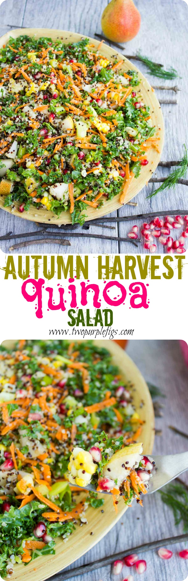 This Quinoa Harvest Salad is a wonderfully autumnal and incredibly healthy vegan dish that includes delicious seasonal vegetables like corn, carrots, pears and pomegranate as well as superfood quinoa and kale! #salad, #vegan, #quinoa, #fall, #healthy, #dressing, #easy, #cleaneating, #realfood, #Thanksgiving
