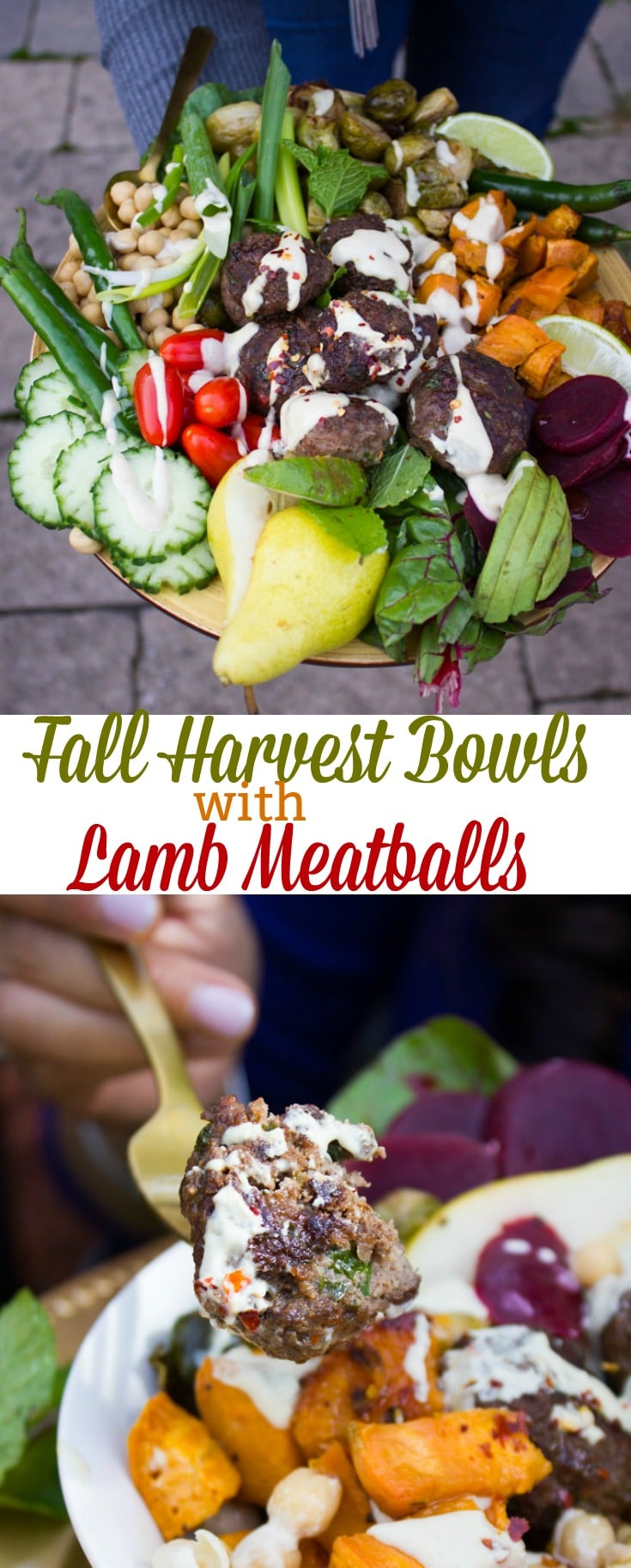 When you're planning a Fall brunch, this Fall Harvest Bowl with Lamb Meatballs is the perfect one! Spicy succulent lamb meatballs, perfectly roasted tender Fall veggies, chickpeas and a luscious tahini sauce on top.